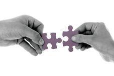 Plataformas de la economía colaborativa