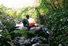 Aprender en y con la naturaleza: el tránsito desde la experiencia a la evaluación y la investigación educativa