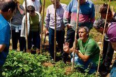 Curso de iniciación sobre horticultura ecológica (Septiembre)